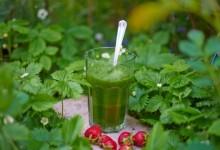 Green Hawaii – Smoothies Rezept für ein Stück Gesundheit