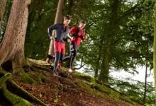 Sport im Frühling – Vorsicht vor Zeckenbissen