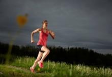 Neue Interplattform zur Trainingsgesundheit