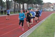 TRAININGSPRAXIS LAUFEN: Wie sich ein 10 km von einem 5 km-Training unterscheidet