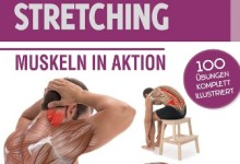 Anatomie & Stretching – MUSKELN IN AKTION