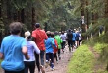 Rennsteiglauf 2016: Teilnehmerzahlen auf Rekordniveau