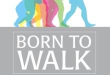 Born to Walk – Den natürlichen Gang neu entdecken: Wie Faszien unsere Bewegung steuern